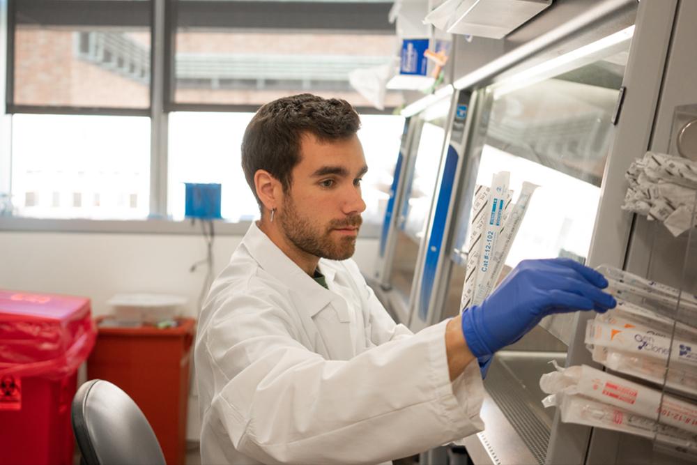 Una nueva perspectiva de la aterosclerosis